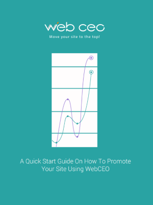 Web CEO Quick Start Guide